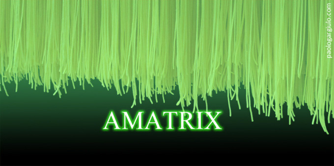 matrix-amatrix-amatriciana
