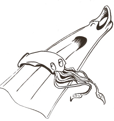 pinna-e-calamaro
